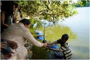 COMMONWEALTH SG VISITS MANGROVE SITE