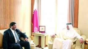 Foreign Minister meets Emir of Qatar