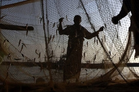 Sri Lanka Navy arrests 38 Indian  fishermen