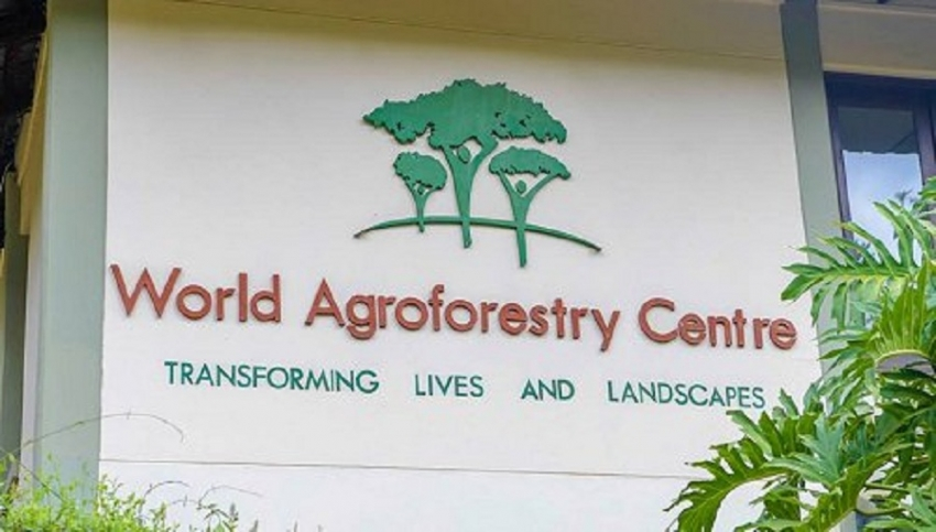 President visits World Agroforestry Center in Nairobi
