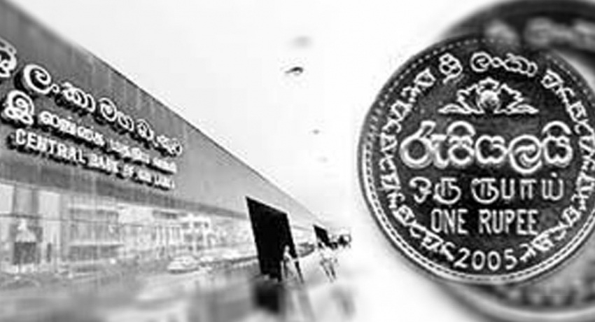 SL rupee appreciates by 4.6% so far this year