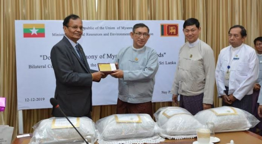 Donation of 15,000 Teak Seeds from the Government of Myanmar to Sri Lanka